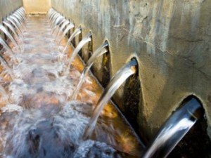 Removing Heavy Metals from Waste Water