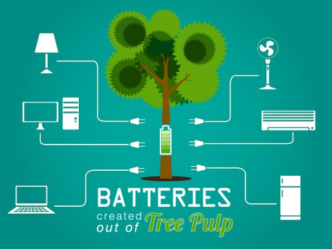 batteries-created-outof-tree-pulp-image
