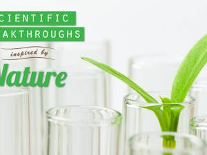 Scientific Breakthroughs Inspired by Nature
