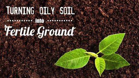 Oil-Fertile-Soil-Header
