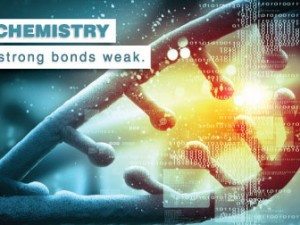 New chemistry makes strong bonds weak