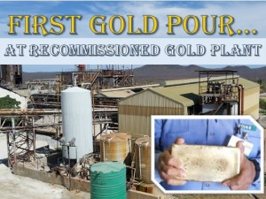 Core Recommissions African Gold Plant